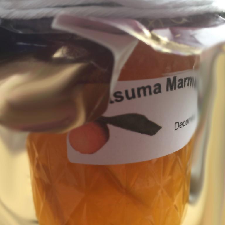 Satsuma Marmalade
